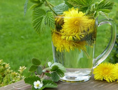 חליטה תה מצמחי מרפא